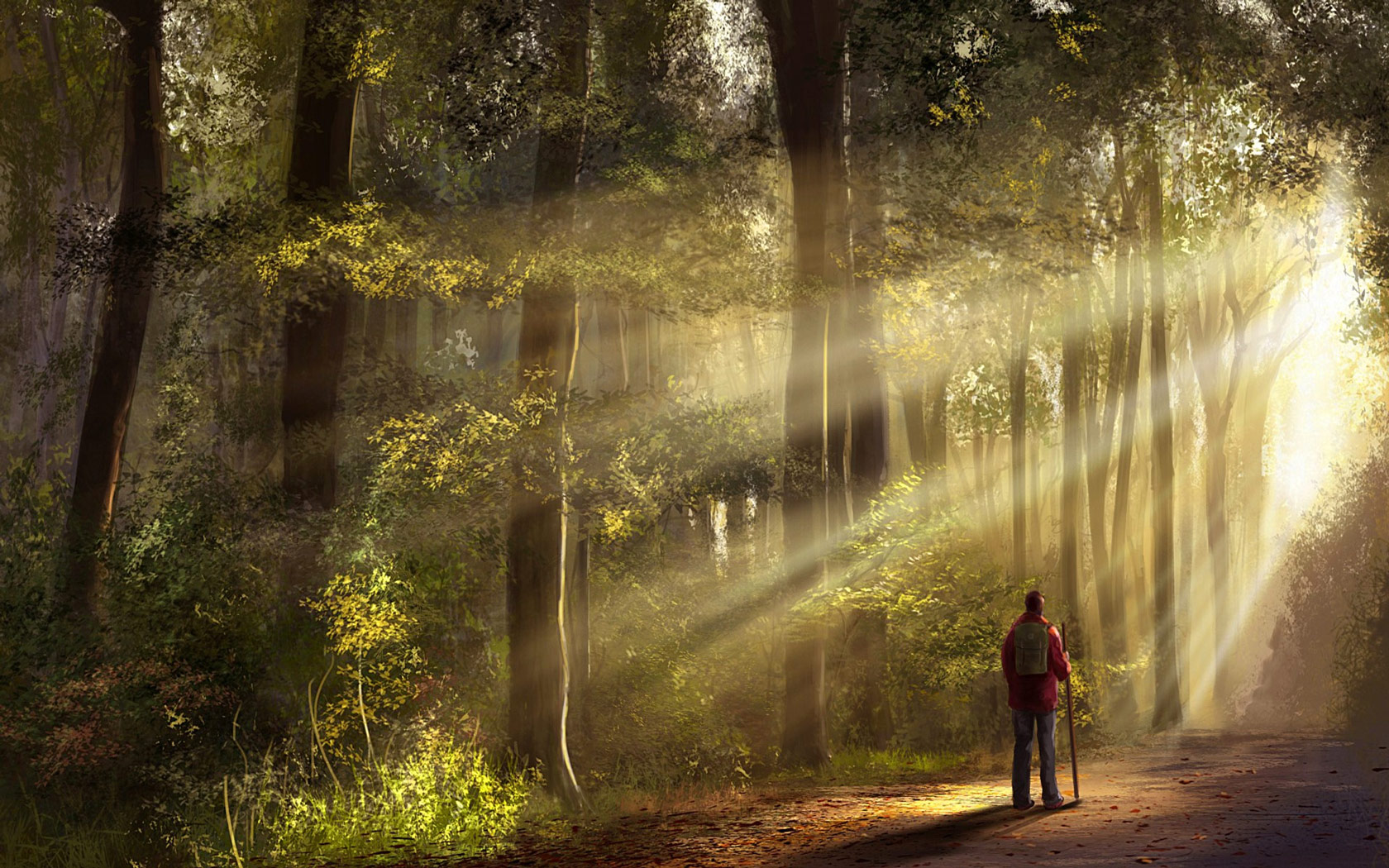 Walking_Through_The_Forest_freecomputerdesktopwallpaper_1680