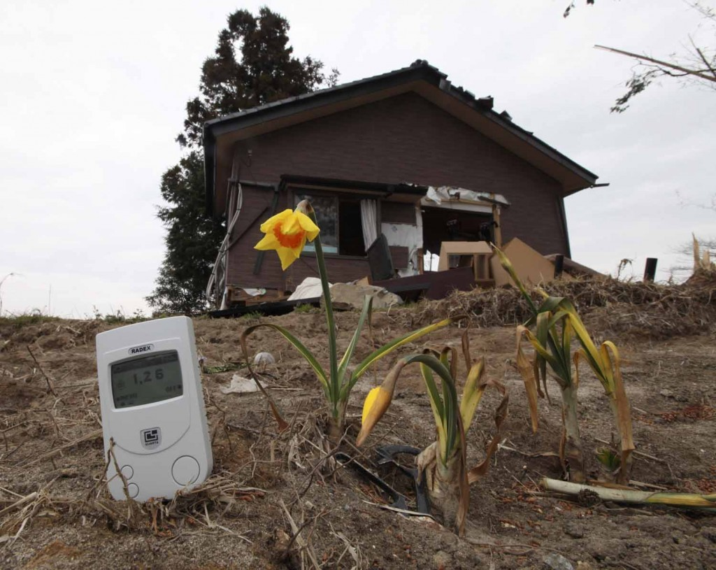 A radiation monitor, placed by a photographer, is seen next to a damaged house and flowers at a devastated area hit by earthquake and tsunami in Minamisoma, about 18 km (11 miles) from the damaged Fukushima nuclear power station in Fukushima prefecture April 11, 2011. Residents of a Japanese village well-outside of an evacuation zone set around a crippled nuclear power plant have been told to prepare to be evacuated, a local official said on Monday. The monitor indicates 1.26 microsieverts per hour. Generally, people are exposed to about 1 to 10 millisieverts of radiation a year from natural background radiation, caused by radioactive substances in the air and soil. One thousand microsieverts make 1 millisievert.    REUTERS/Kim Kyung-Hoon (JAPAN - Tags: ENVIRONMENT DISASTER)