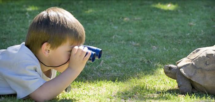 Çocuklarınızla beraber yapabileceğiniz 6 kolay eko-aktivite