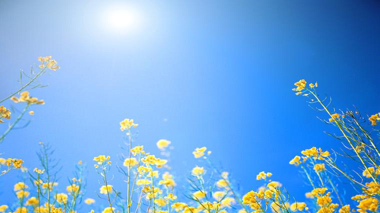 Yaz ayları için 10 öneri