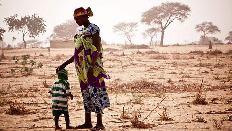 Afrika'yı aç bırakan tarım emperyalizmi