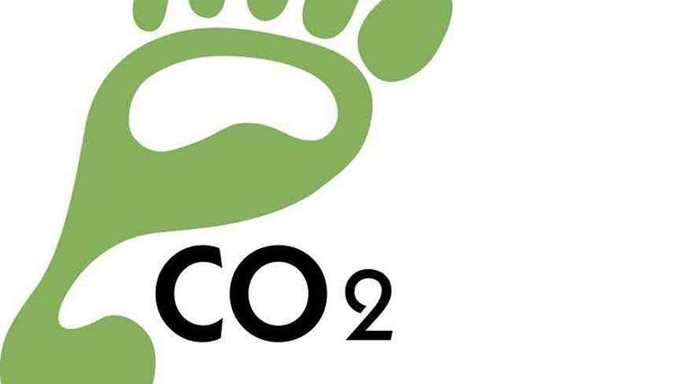 Bugün karbon ayak izinizi azaltmak için ne yaptınız?