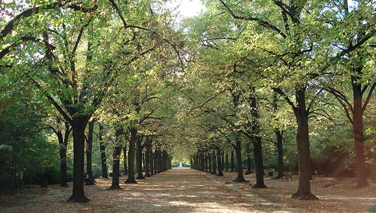 Şehiriçi nefes alma durakları: İstanbul parkları