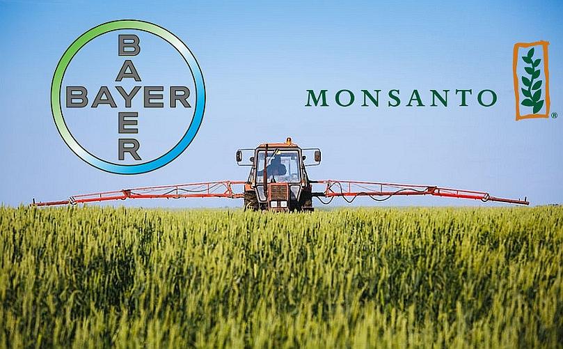 Kimyasal ilaç devi Bayer, GDO devi Monsanto'yu satın aldı: Peki şimdi ne olacak?