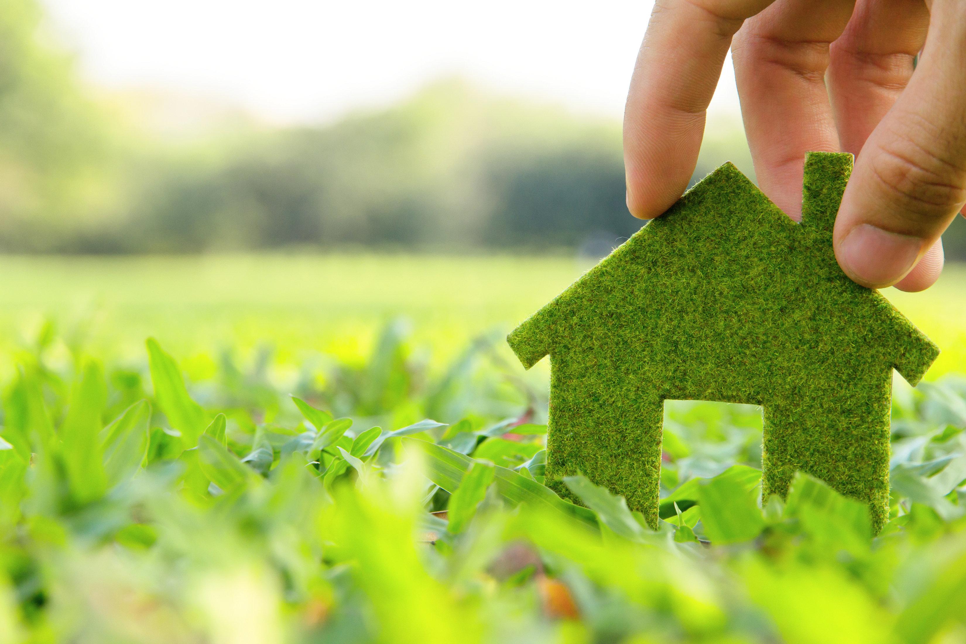 7 Adımda Daha Sürdürülebilir ve Çevreci Bir Ev
