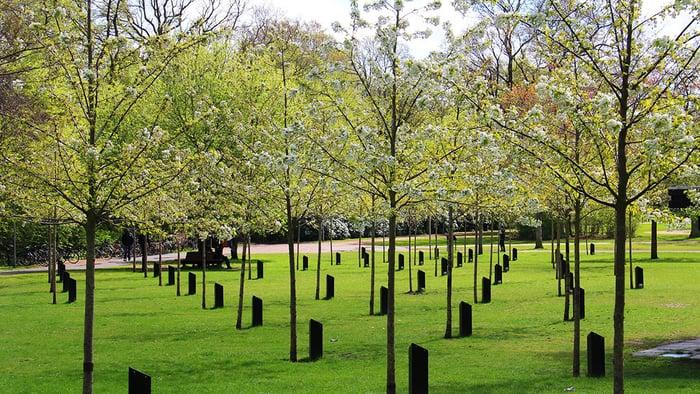 Danimarka'nın Müzik Parkı'nda ağaçlar şarkı söylüyor