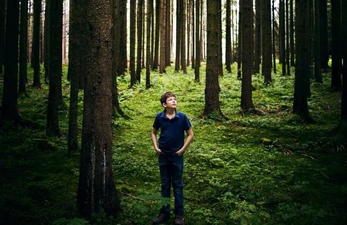 Felix ile tanışın: 19 yaşındaki genç 130 ülkede 14 milyar ağacın dikilmesini sağladı