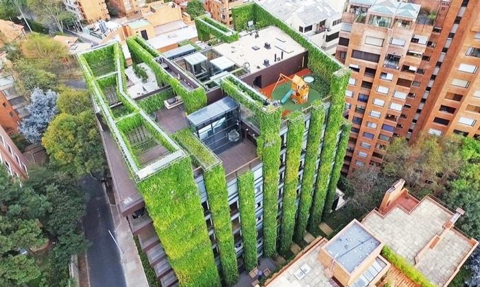 Dünyanın en büyük dikey bahçesi 85 bin bitki ile Kolombiya'da yükseliyor
