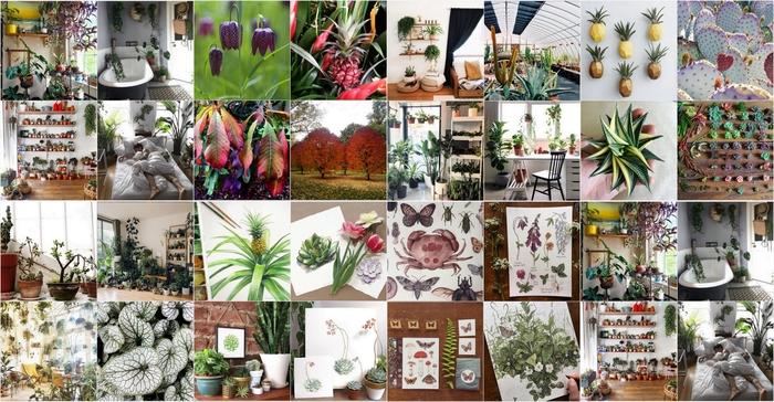 Bitkiseverlerin içini açacak, 8 yemyeşil Instagram hesabı