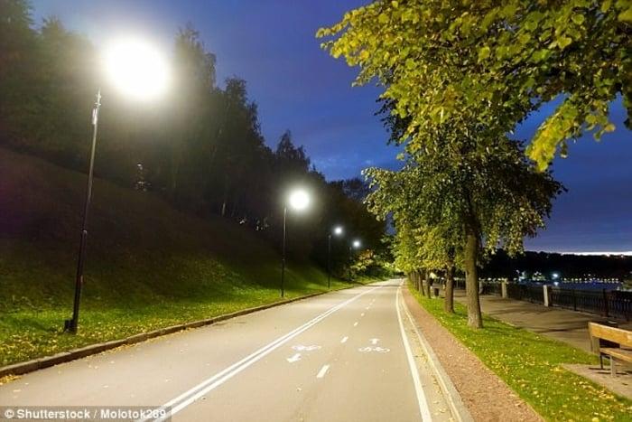 Sokaktaki ışıklar ağaçların da uykusundan çalıyor, genç ölmesine sebebiyet veriyor