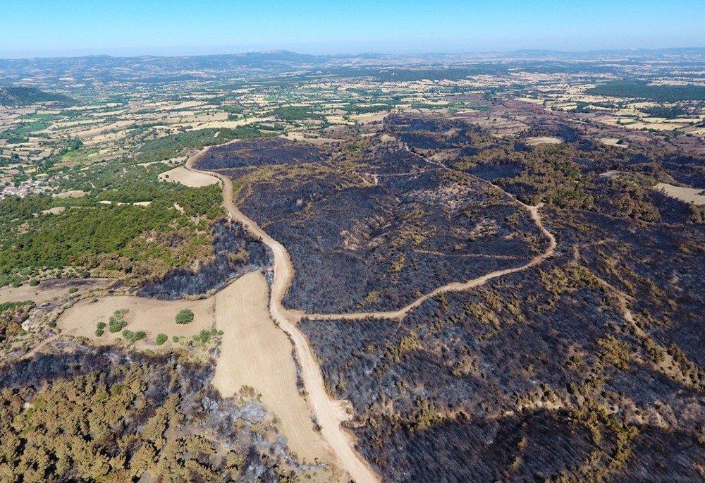 Çanakkale'de orman yangınları bir yılda 319 hektar yeşil alanı yok etti