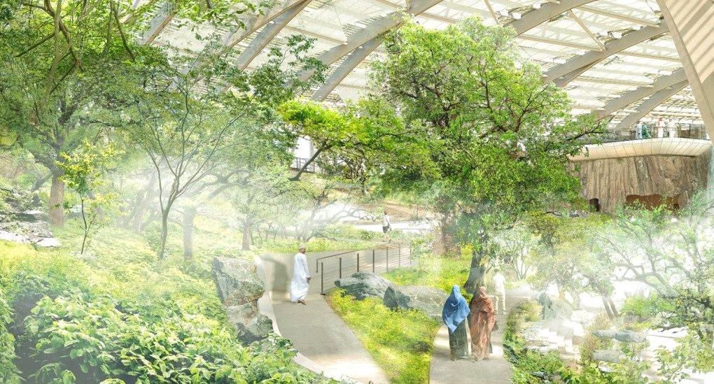 Dünyanın en büyük botanik bahçesi Umman Çölü'nde kuruluyor