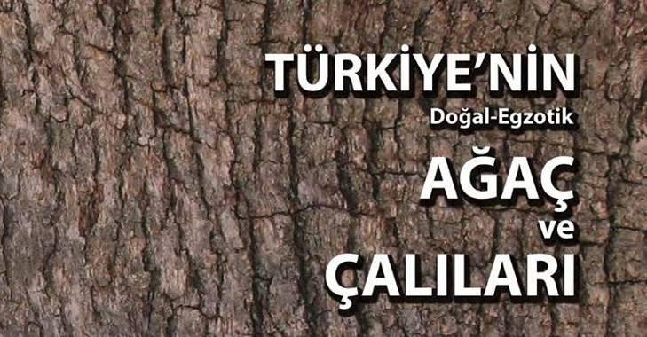 Türkiye'nin Ağaç ve Çalıları kitabı online ve ücretsiz olarak yayında