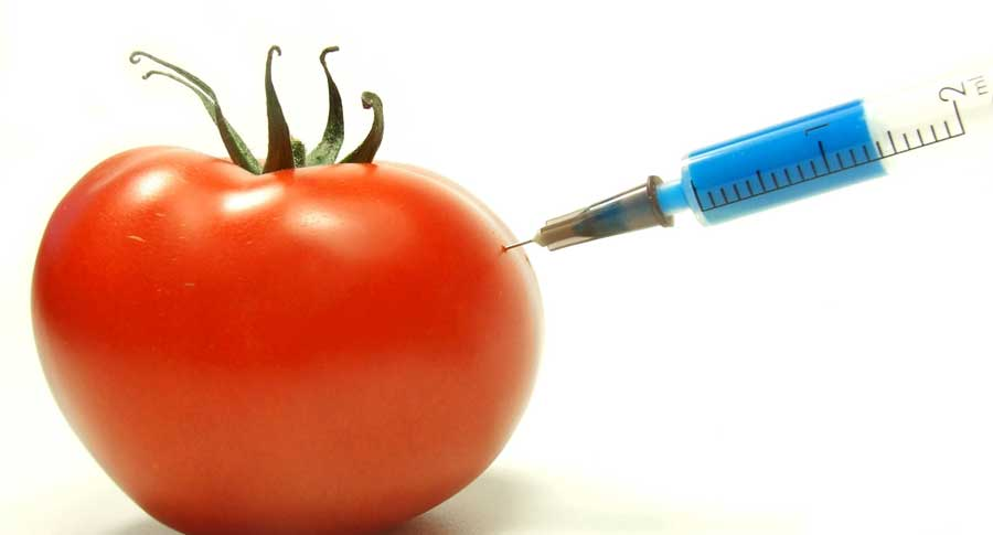 Organik Gıdalar Vücudu Nasıl Etkiliyor