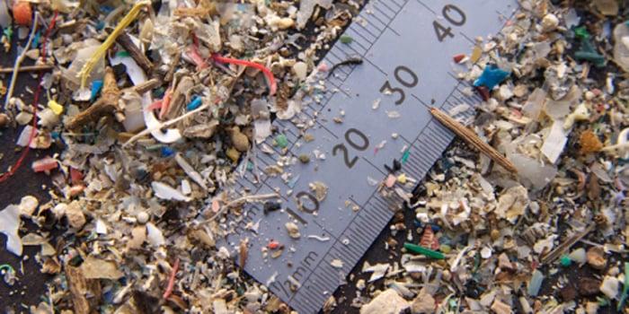 Mikroplastik her yerde: Yediğiniz her yemekte 100'den fazla plastik parçacığı bulunabilir