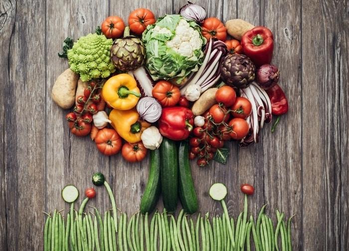 Bitkisel bazlı beslenmenin sağlık için yararlarını gösteren 5 yeni araştırma