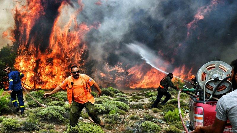 Dayan Komşu! Yunanistan'daki yangınlar hakkında bilmeniz gerekenler ve yardım yapabileceğiniz kuruluşlar