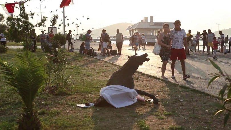 Büyükada'ya faytonları protesto amacıyla burnundan kan gelen at heykeli kondu