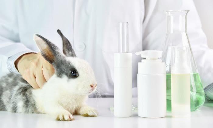 19 kozmetik markası küresel hayvan testlerine son veriyor