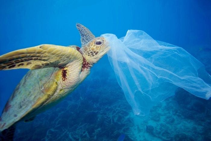 Çevre ve Şehircilik Bakanlığı'na: Plastik kirliliğini durdurun
