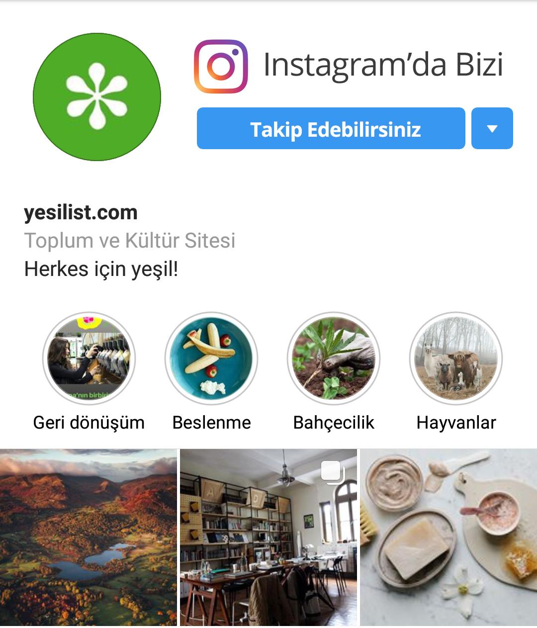 Yeşilist Instagram