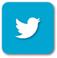 Yeşilist Twitter Resmi Hesabı