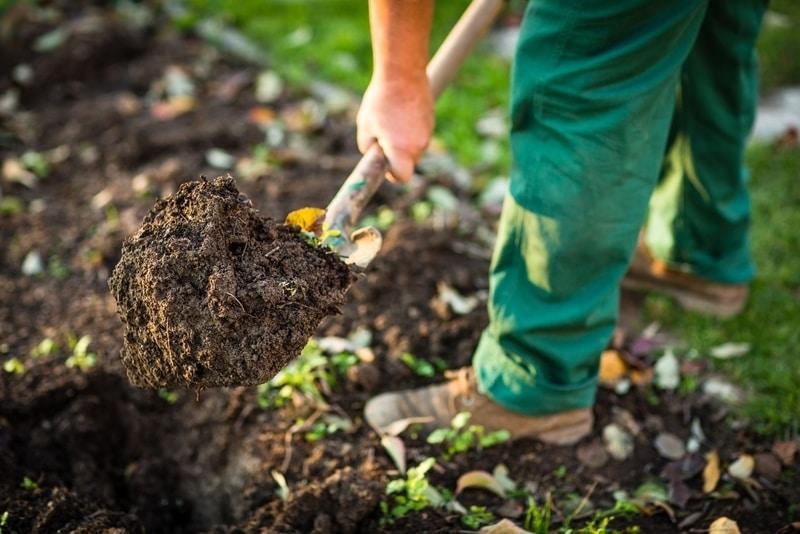 Bahçecilik yapmanın fiziksel ve ruhsal faydaları