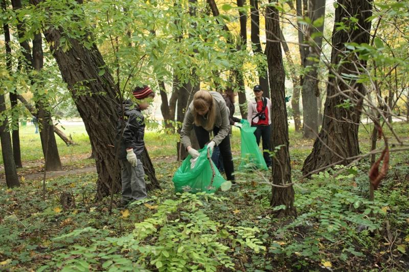 Doğa dostu bir kamp tatili için 9 öneri – Yeşilist | Herkes için yeşil