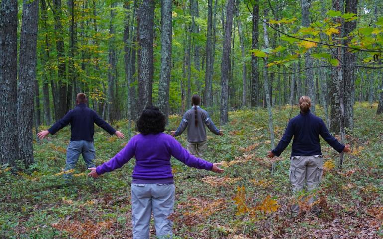 Ağaçlara bakmak içki, sigara ve zararlı yiyecek tüketme isteğini azaltıyor – Yeşilist | Herkes için yeşil