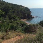 İstanbul'da yaz sıcaklarında serinleyebileceğiniz 9 yeşil alan