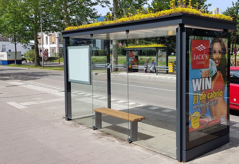 Bu şehirdeki otobüs duraklarının çatıları arıların sevdiği bitkilerle kaplanıyor