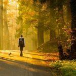 Şehirde doğa ile iç içe yaşamak için 8 öneri