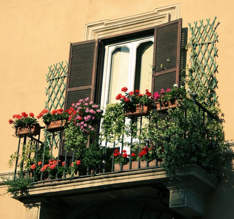 Şehirde doğa ile iç içe yaşamak için 8 öneri – Yeşilist | Herkes için yeşil