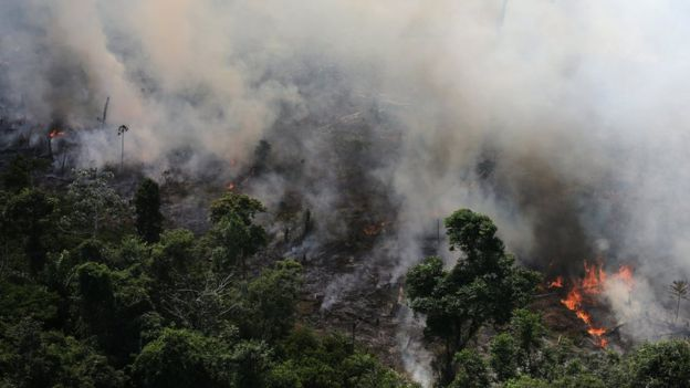 Amazon ormanları yanıyor: Dünyanın akciğerlerinde sene başından bu yana 74.000 yangın çıktı