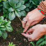 100 yıl yaşamanın sırrı bahçecilikle uğraşmak olabilir mi?