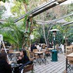 İstanbul'da sonbaharın keyfini çıkarabileceğiniz 6 bahçeli mekân