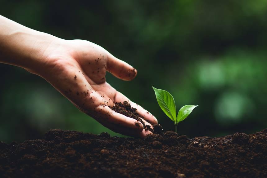 Toprağı korumak için herkesin yapabileceği 5 şey