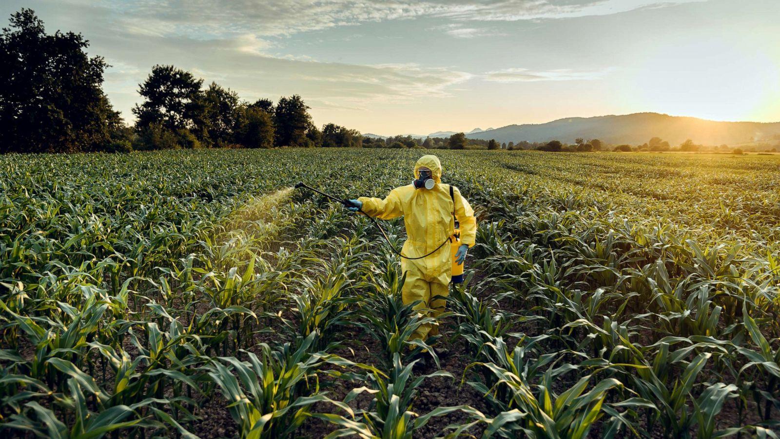 Tarımda kullanılan pestitler zehirliyor
