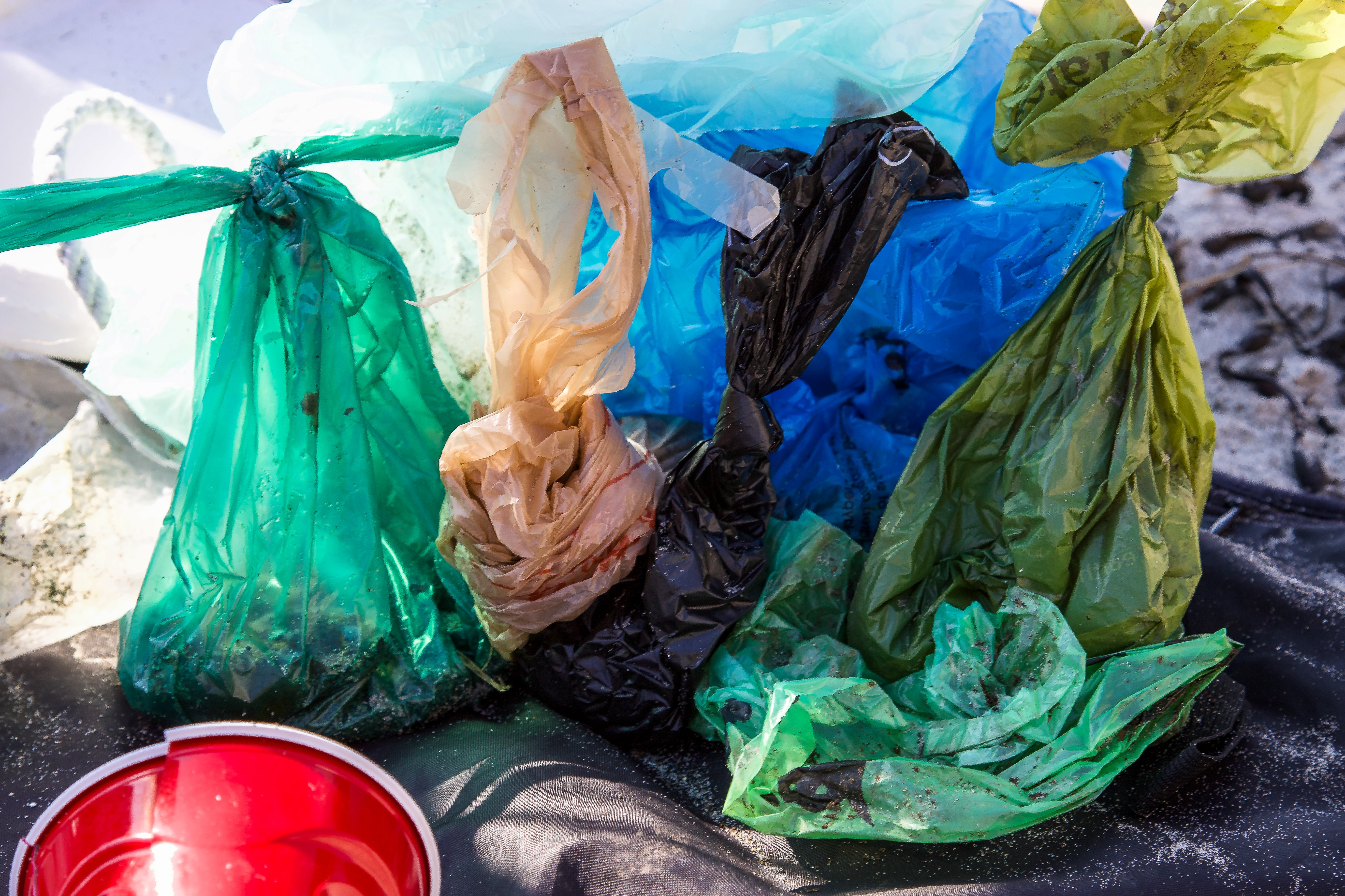 Tek Kullanımlık Plastik Tüketimini Azaltmak için 4 Alternatif Yol