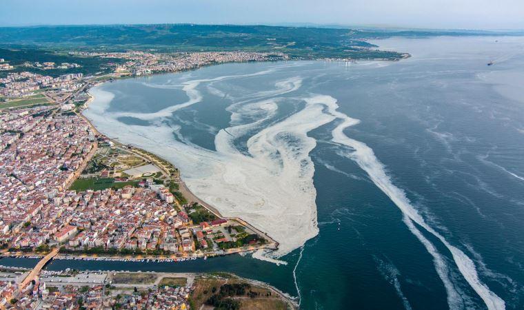 Türkiye sularında yeni kriz: Deniz salyası