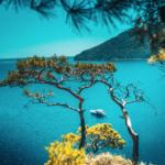 WWF uyarıyor: Akdeniz en hızlı ısınan deniz haline geldi