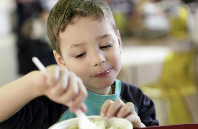 Çocuğunuza Sebze Yedirecek 5 tarif