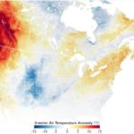 Dünya kavurucu sıcakların etkisi altında, sıcağa bağlı ölümler artıyor