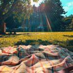 Plastiksiz bir piknik için beş ipucu