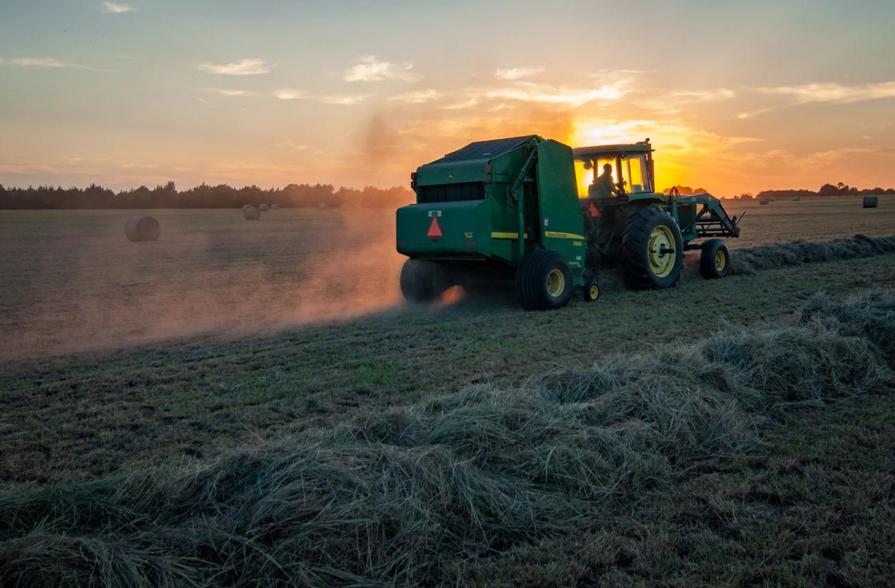 IPCC raporu: Sıcaklık arttıkça gıda temini de zorlaşacak