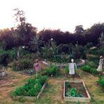 Kadıköy'de iki yeni topluluk bahçesi açılıyor